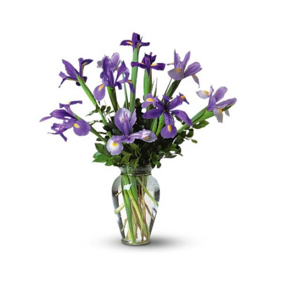 Iris Bouquet in a Vase