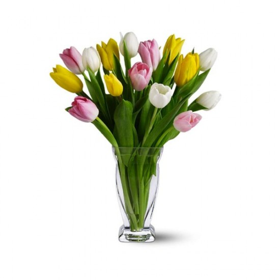 15 Mixed Tulips